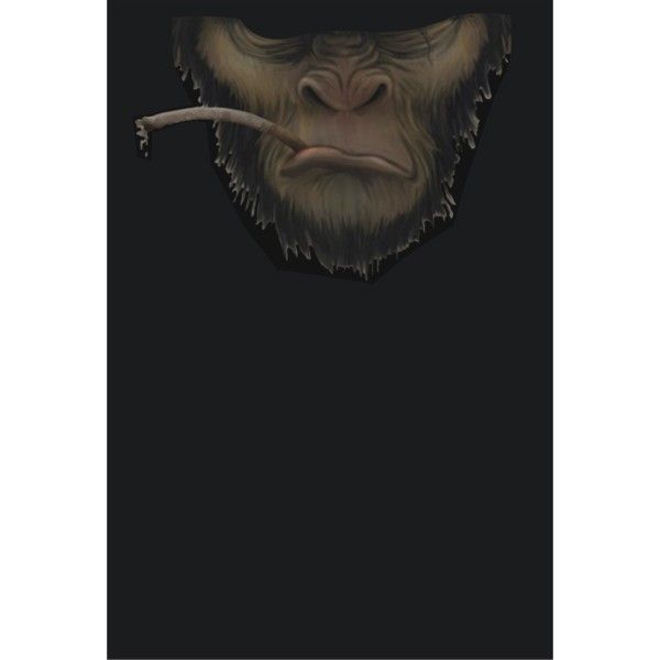 PiWear® Scarf Monkey 4